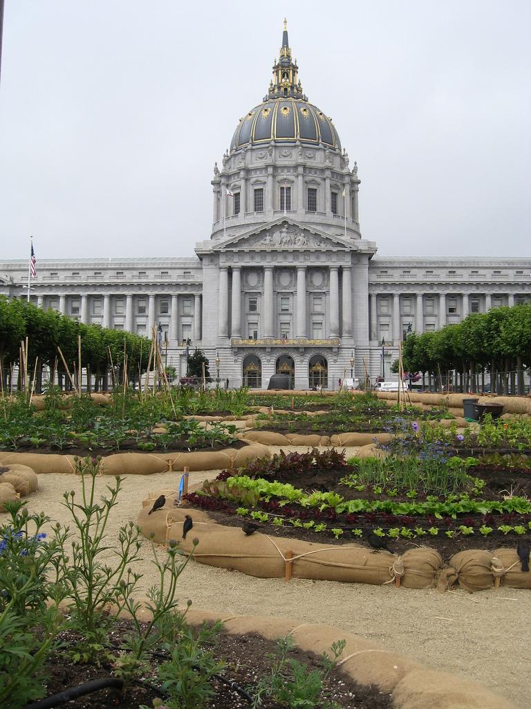sf mayor and victory gardener gavin newsom visits white house