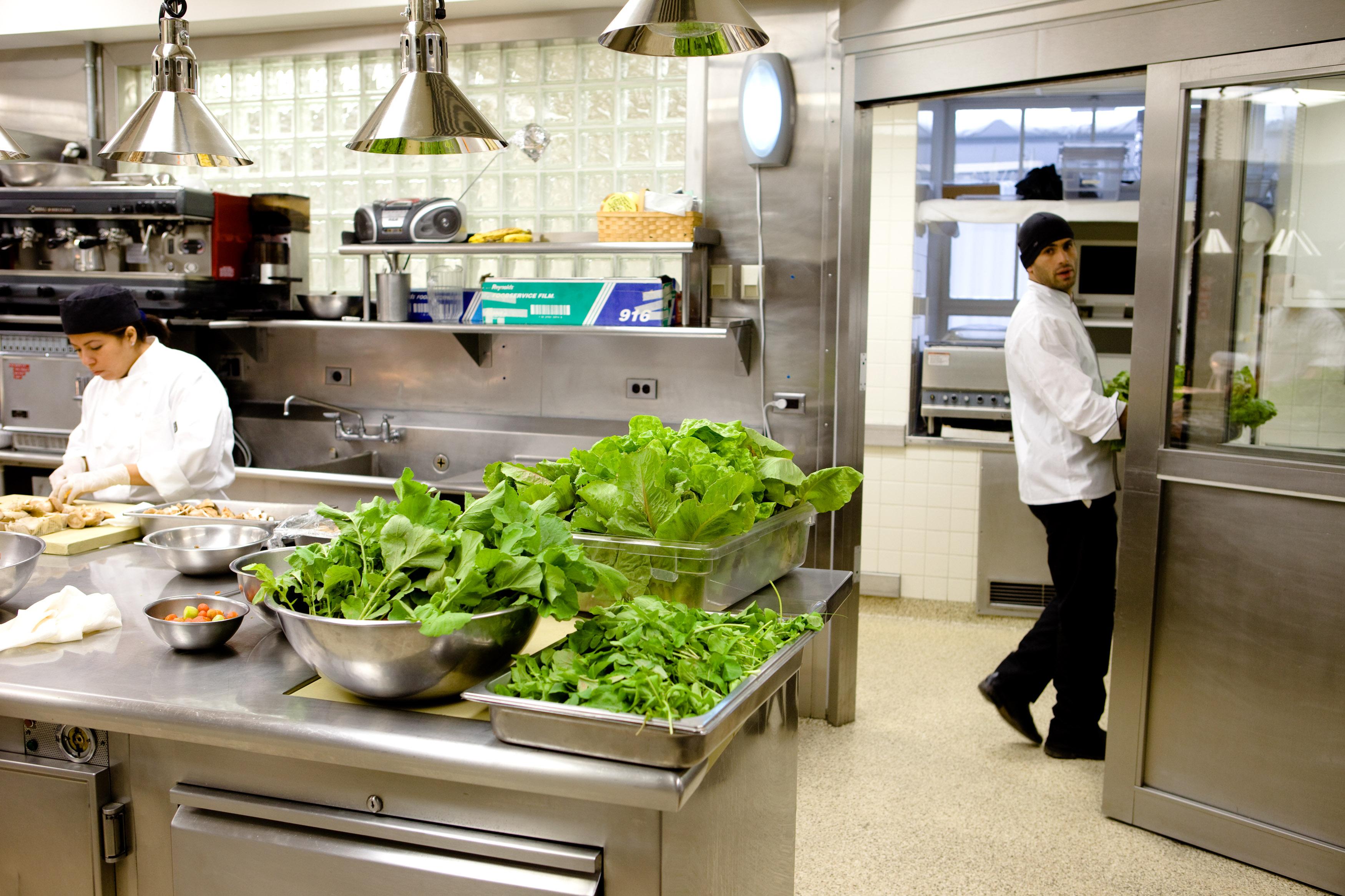 White House Kitchen Garden White House Kitchen Garden On Video Thewhofarm